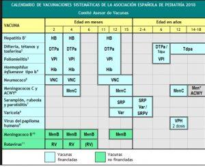 calendario vacunal 300x244 - calendario vacunal